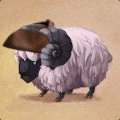 Cptn.Sheep